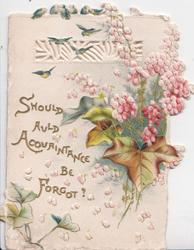 SHOULD AULD ACQUAINTANCE BE FORGOT in gilt on white background, pink heather & ivy leaves right, perforated design & blue-birds at top