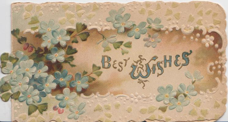 BEST WISHES in blue on brown plaque surrounded forget-me-nots & white design
