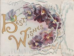 BEST WISHES (B & W illuminated ) in gilt, white design & purple pansies around