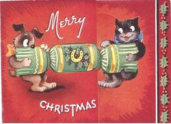MERRY CHRISTMAS cat & dog pull ends of Christmas cracker, red background, panel of holly right