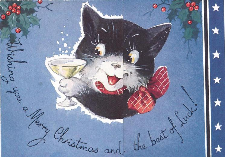 WISHING YOU A MERRY CHRISTMAS AND THE BEST OF LUCK! black cat holds drink, panel of stars right