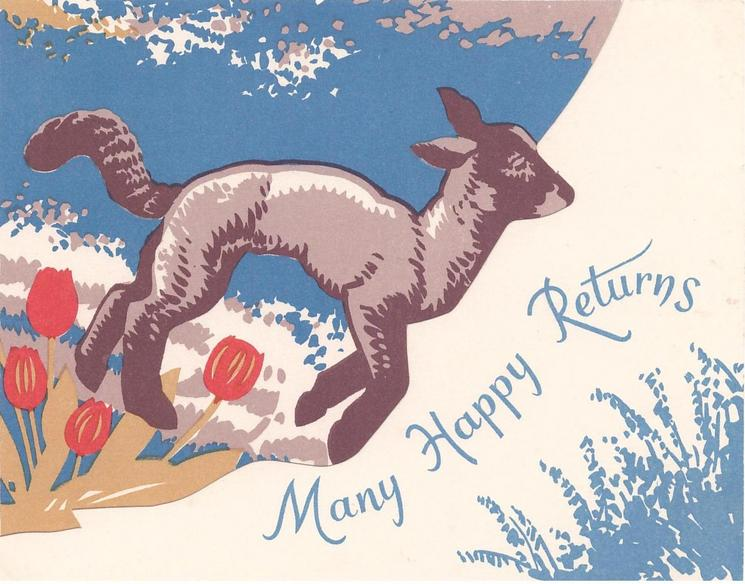 MANY HAPPY RETURNS lamb faces right,  red tulips