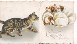 MANY LOVING CHRISTMAS GREETINGS cat stalks toward 3 puppies asleep on next flap