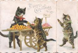 A HAPPY CHRISTMAS TO YOU cat sells  kitten an orange from barrow, another  walks in from right