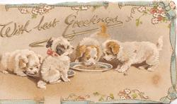 WITH BEST GREETINGS in gilt  above 4 puppies lapping from plates, blue & gilt floral marginal design