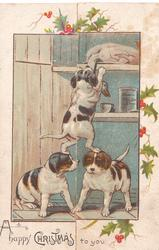 A HAPPY CHRISTMAS TO YOU  athletic puppy stands on heads of 2 others & attempts to pull down a goose