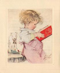 no front title, toddler faces right looking at red book, toy lamb behind