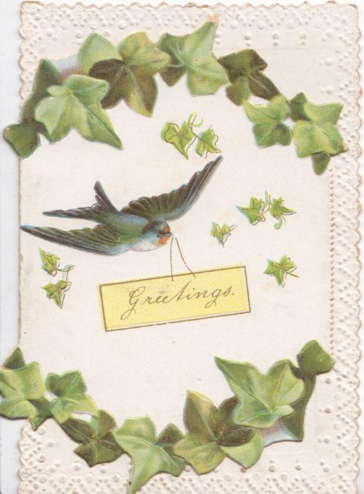 GREETINGS on plaque carried by swallow, ivy leaves above & below
