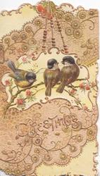 GREETINGS in gilt, 3 blue-tits perched on floral spray in white inset, very heavy embossed brown & gilt design above & below