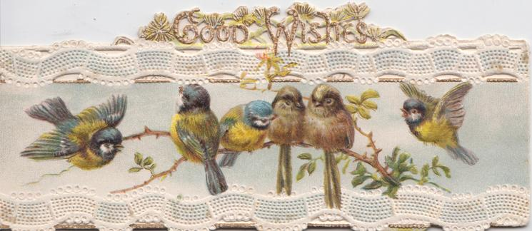 GOOD WISHES above marginal perforated white design, 3 blue-tits & one flies, 2 finches perched on wild rose spray
