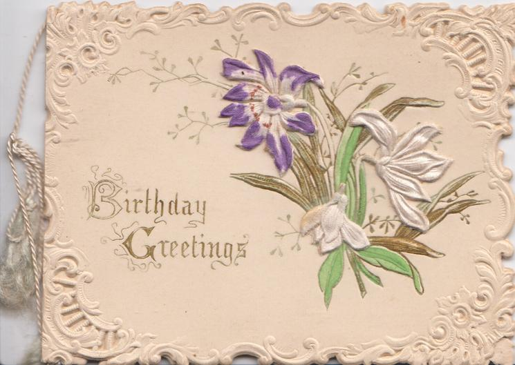 BIRTHDAY GREETINGS in gilt lower left, purple & white cyclamen, perforated white marginal design