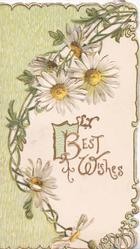 BEST WISHES(B & W illuminated) in gilt under perforated chain of white daisies with yellow centres, green design left