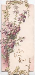 AULD LANG SYNE in gilt below purple heather, leafy designed top & bottom margins