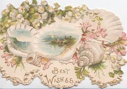 BEST WISHES below 2 watery rural insets in shells, lilies-of-the-valley & pink stylised flowers, floral marginal designs