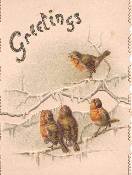 GREETINGS in glittered gilt above 4 robins perched on icy branches