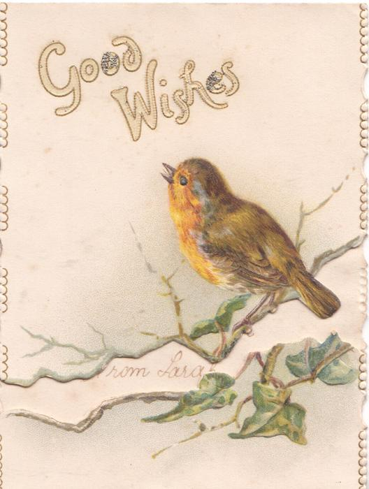 GOOD WISHES above robin perched on leafy branch
