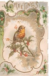 GREETINGS in gilt above gilt bordered inset of robin perched on holly cut into left flap, holly around