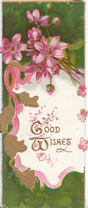 GOOD WISHES (G, & W illuminated) in gilt on white pink bordered plaque, pink anemones above, deep green background
