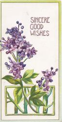 SINCERE GOOD WISHES in gilt above lilac seeming to come through window below, narrow green margins