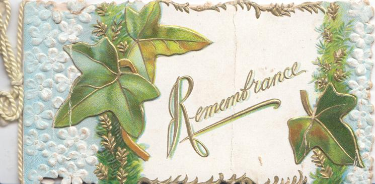 REMEMBRANCE in gilt on white plaque between ivy  leaves, blue forget-me-nots left & right
