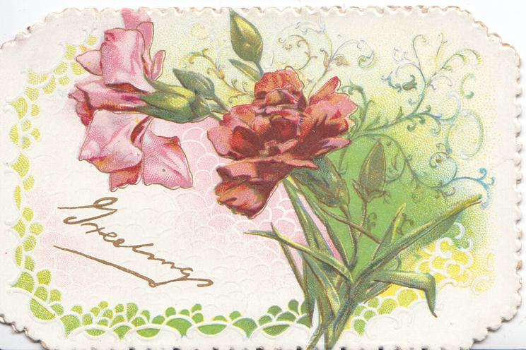 GREETINGS in gilt below pink & red carnations, leafy designs