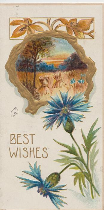 BEST WISHES in gilt, gilt bordered rural inset stooked wheat, blue cornflowers below