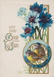 WITH EVERY GOOD WISH (G & W illuminated), 2 blue-tits in circular inset below blue cornflowers