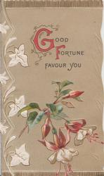 GOOD FORTUNE(G & F illuminated) FAVOUR YOU above fuchsia, light brown background