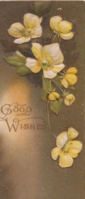 GOOD WISHES in gilt left, yellow primroses above/right, shaded brown background