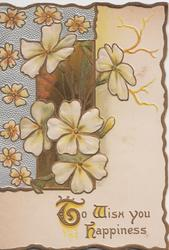 TO WISH YOU HAPPINESS (T,W, & H illuminated) in gilt below yellow primroses in elaborate design above, 3 gilt margins