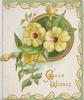 GOOD WISHES in gilt below yellow primroses & green circular design, 3 yellow leaves & green design borders