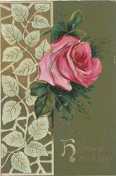 HAPPINESS BE YOURS(H illuminated) in gilt, single pink rose beside leafy basal design, deep green background