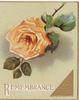 REMEMBRANCE in gilt below single orange rose, gilt design & margins, pale green background