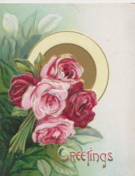 GREETINGS in red below pink & red roses, foliage left, gilt & yellow design behind