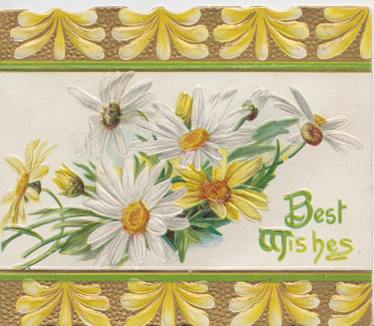 BEST WISHES(B & W illuminated ) in green, white & yellow daisies between top & bottom gilt & yellow designs