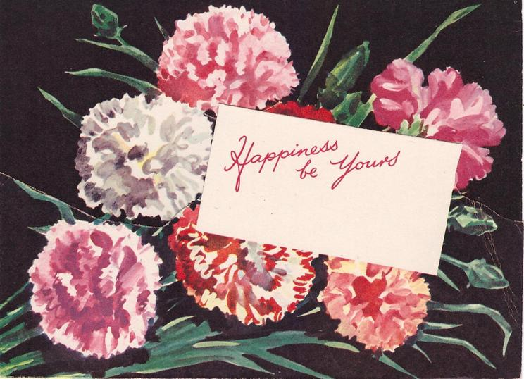 HAPPINESS BE YOURS on white inset, variously coloured carnations on black background