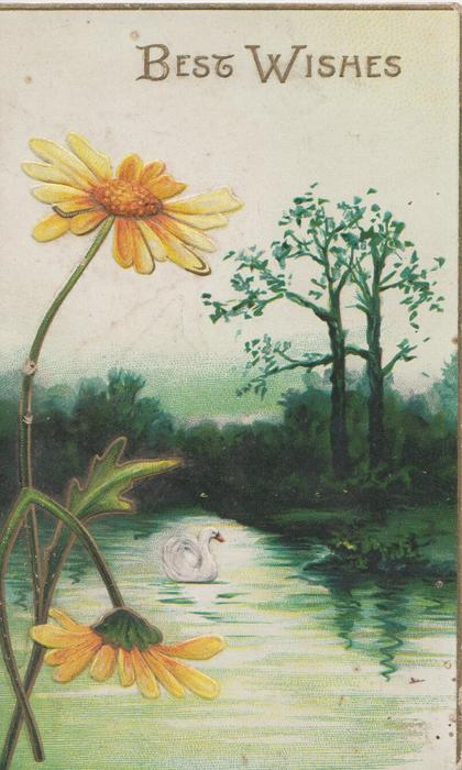 BEST WISHES in gilt above yellow daisies & watery rural scene with swan, gilt margins