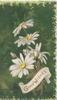 GOOD WISHES in gilt on white scroll below white daisies, green marginal design, deep green background