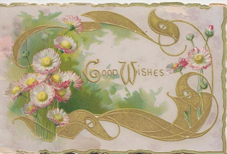 GOOD WISHES(G & W illuminated) in gilt centrally. pink & white daisies surrounded by elaborate gilt design
