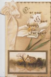 E'ER NEAR IN HEART THOUGH FAR APART(E, H & F illuminated) over yellow/white poppy, ribbon & rural inset