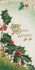 GOOD WISHES(G & W illuminated) right of holly in perforated design