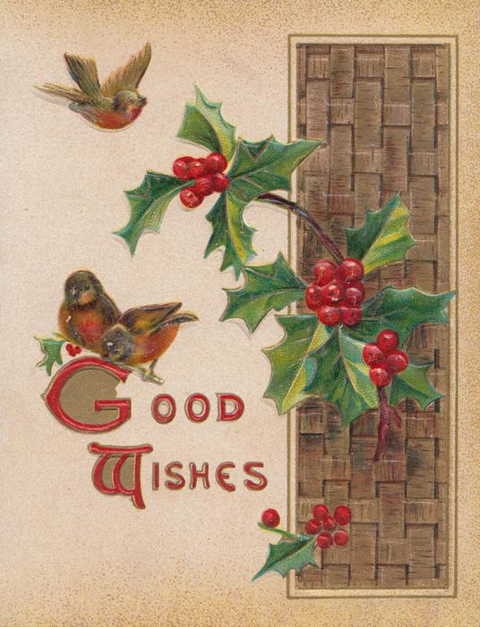 GOOD WISHES(G&W illuminated), 2 robins perched left & one flies, holly right over plait brown inset design
