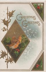 CHRISTMAS GREETINGS in gilt, stylised holly left, diamond shaped inset with 3 robins, snow around