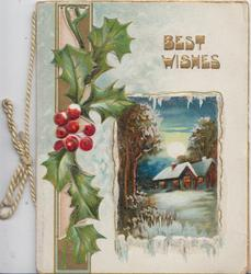 BEST WISHES in gilt above winter rural inset, holly & perforated design left