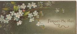 FORGET-ME-NOT(F illuminated) in gilt, blue forget-me-nots left, deep green background