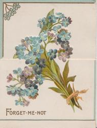 FORGET-ME-NOT bunch of blue & purple forget-me-nots on front & revealed back flaps