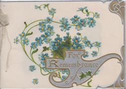FOR REMEMBRANCE in gilt on elaborate silver plaque blue forget-me-nots above