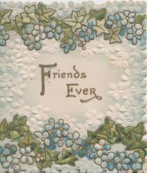 FRIENDS EVER centrally in gilt, blue forget-me-nots & white & blue embossed floral design