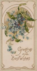 GREETINGS AND BEST WISHES in  gilt below blue forget-me-nots hanging from circular window, pale green marginal design
