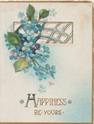 HAPPINESS BE YOURS in gilt below blue forget-me-nots hanging from perforated window, 3 gilt margins